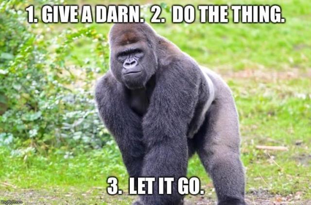 gorilla-meme