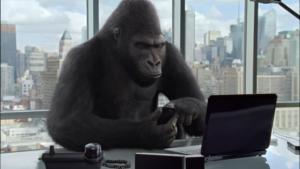 gorilla blog